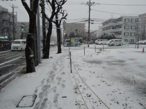 1月14日雪写真