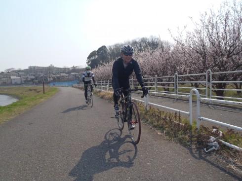 2013/3/10 江ノ島・鎌倉100km