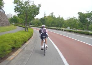 11月10日 尾根幹線ロード練習会フライヤー 写真