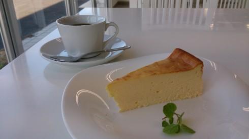 プロペラカフェ下見 チーズケーキ