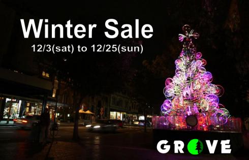 2016 wintersale pop 2